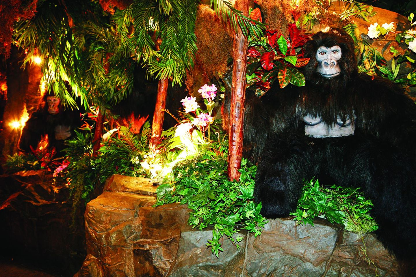 Rainforest Cafe, London Profile Image  - Bars - On XploreUK